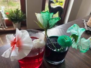 Ignacy_Tomaszewski 5d kwiat